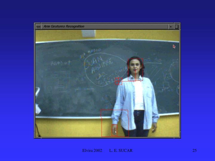 Elvira 2002       L. E. SUCAR
