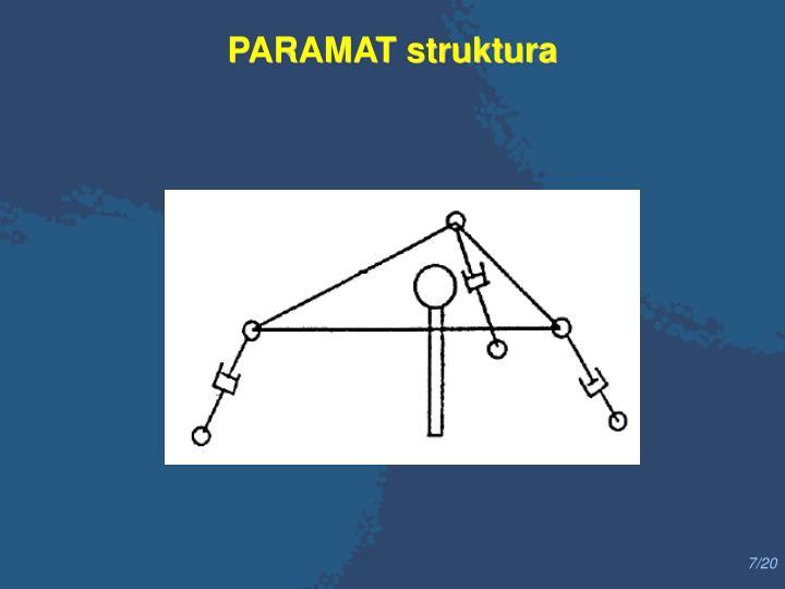 PARAMAT struktura