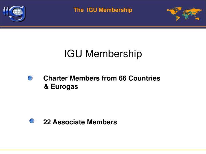 The  IGU Membership