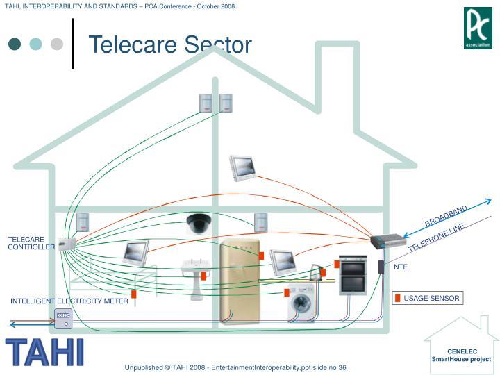 Telecare Sector