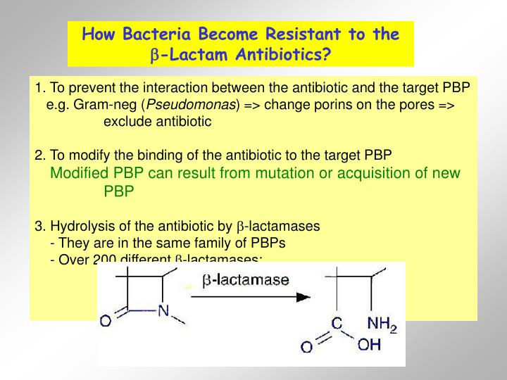 How Bacteria Become Resistant to the