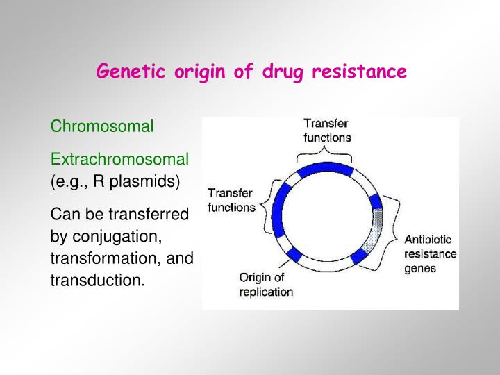 Genetic origin of drug resistance