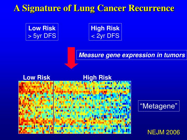 A Signature of Lung Cancer Recurrence