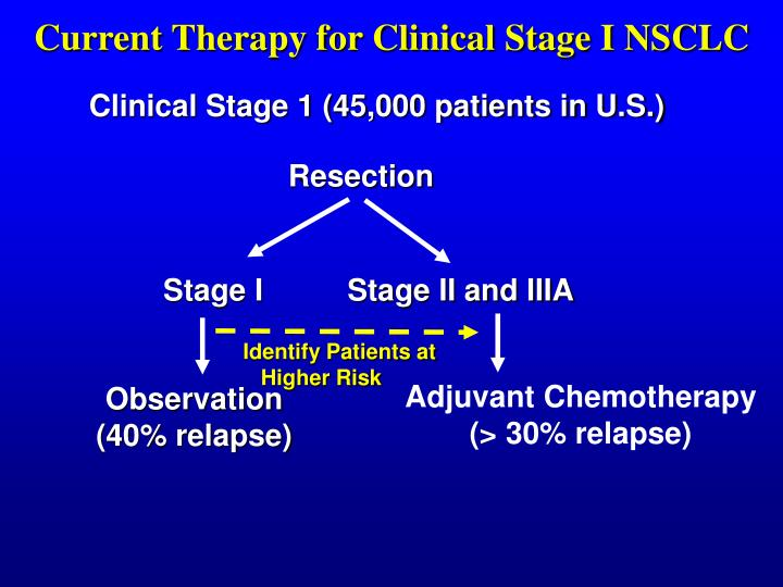 Current Therapy for Clinical Stage I NSCLC