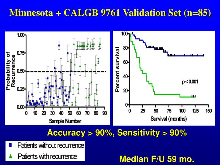 Minnesota + CALGB 9761 Validation Set (n=85)