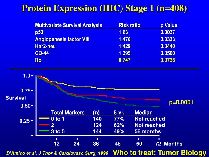 Protein Expression (IHC) Stage 1 (n=408)