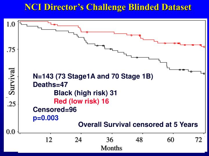 NCI Director's Challenge Blinded Dataset