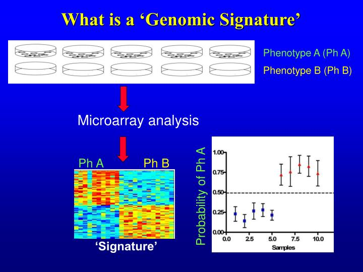 What is a 'Genomic Signature'