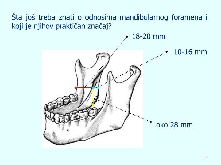 Šta još treba znati o odnosima mandibularnog foramena i koji je njihov praktičan značaj?