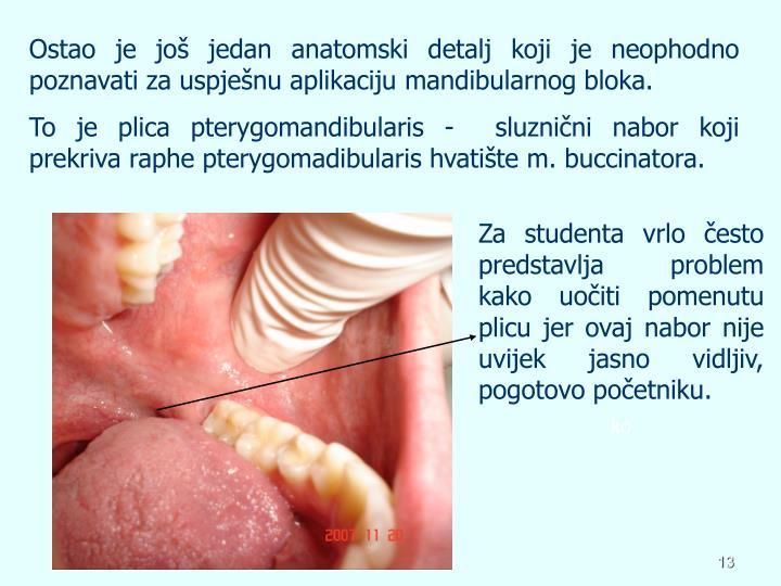 Ostao je još jedan anatomski detalj koji je neophodno poznavati za uspješnu aplikaciju mandibularnog bloka.