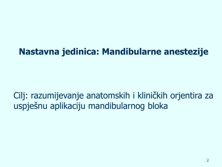Nastavna jedinica: Mandibularne anestezije