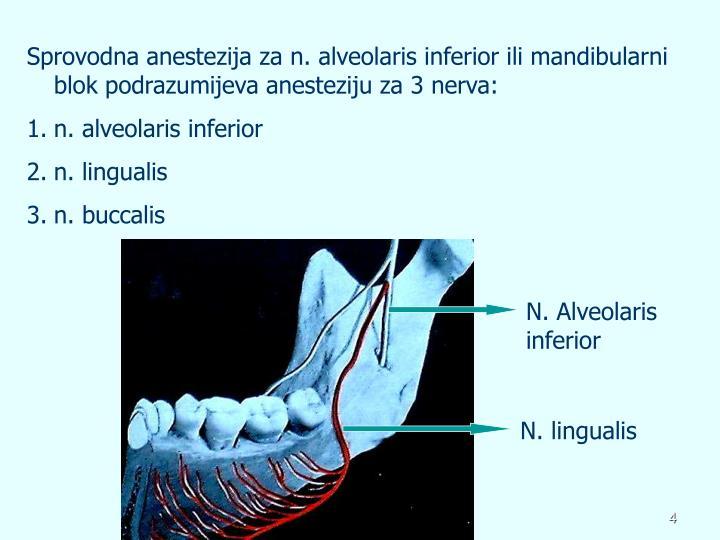 Sprovodna anestezija za n. alveolaris inferior ili mandibularni blok podrazumijeva anesteziju za 3 nerva: