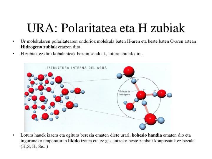 URA: Polaritatea eta H zubiak