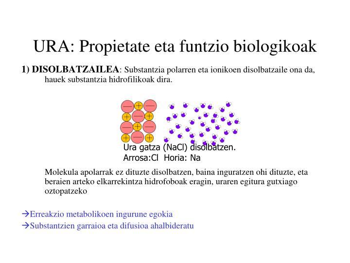 URA: Propietate eta funtzio biologikoak