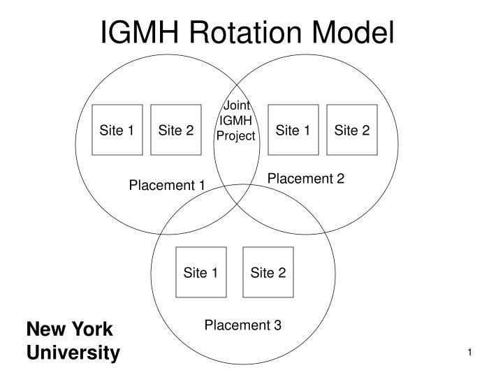 IGMH Rotation Model
