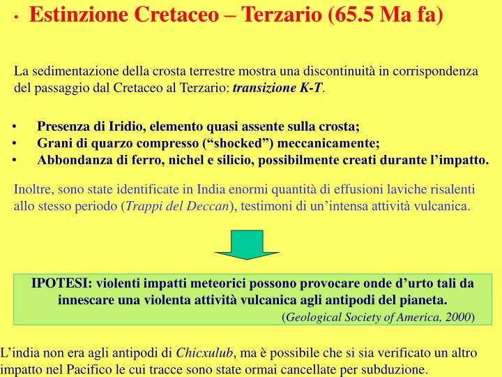 Estinzione Cretaceo – Terzario (65.5 Ma fa)