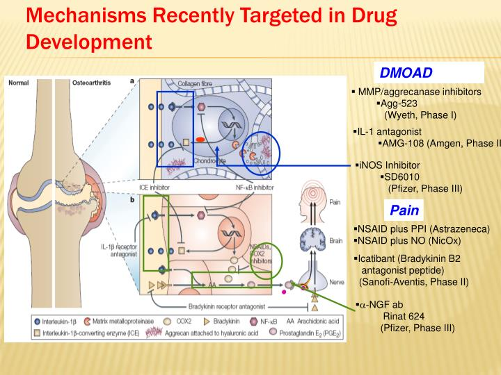 Mechanisms Recently Targeted in Drug Development