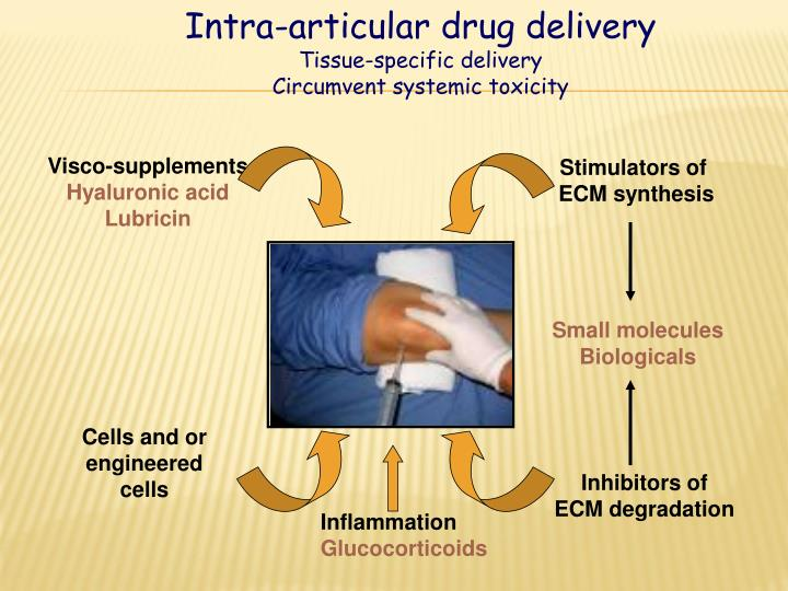 Intra-articular drug delivery