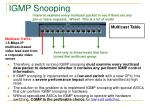 igmp snooping1