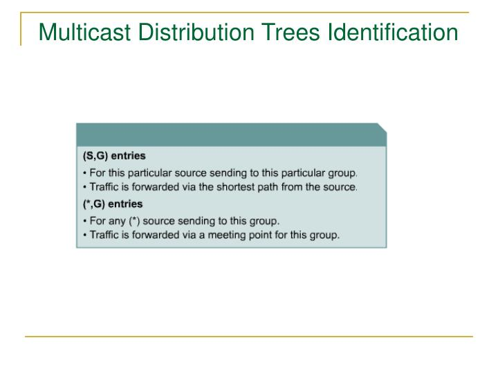 Multicast Distribution Trees Identification