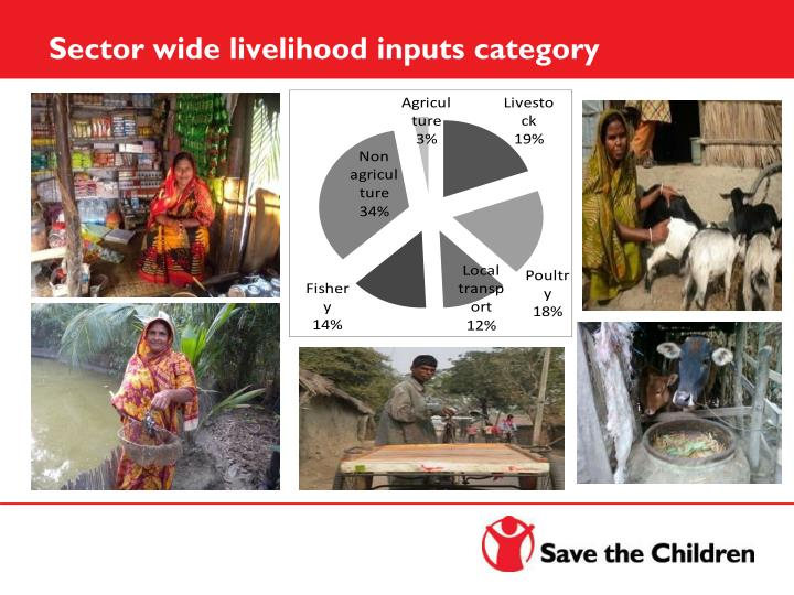 Sector wide livelihood inputs category