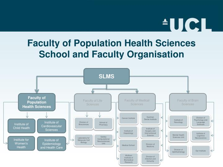 Faculty of population health sciences school and faculty organisation