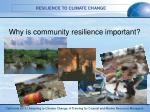 why is community resilience important