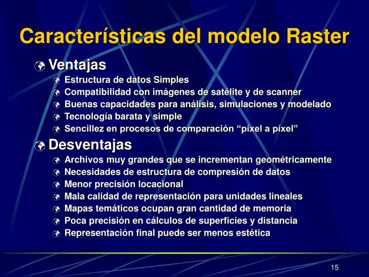Características del modelo Raster