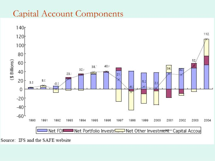 Capital Account Components