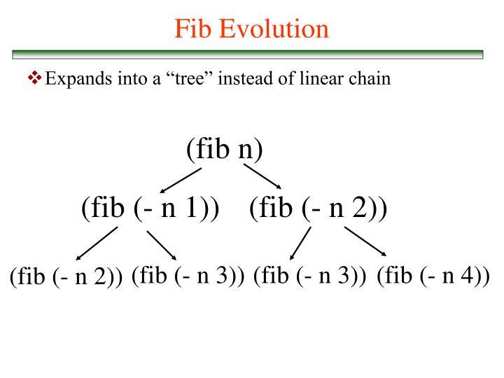 Fib Evolution