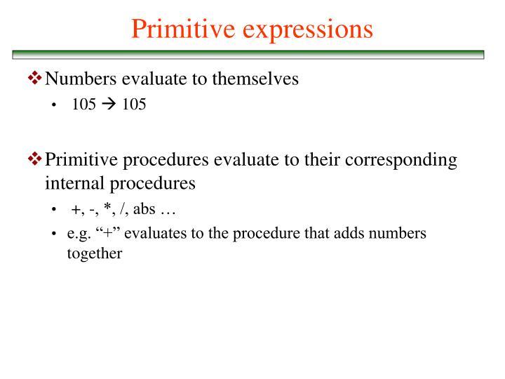 Primitive expressions