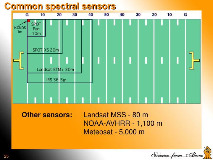Common spectral sensors