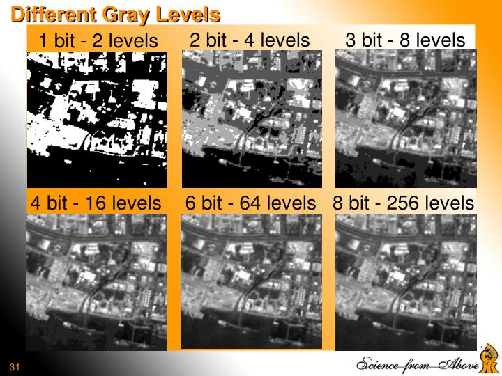 Different Gray Levels