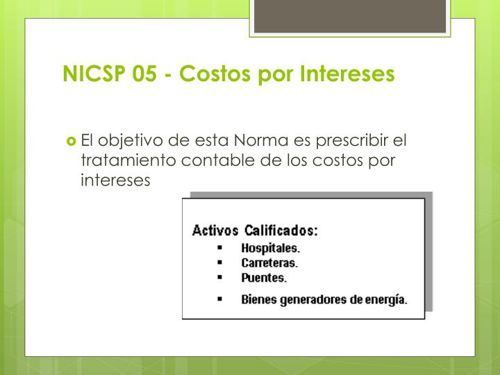 NICSP 05 - Costos por Intereses