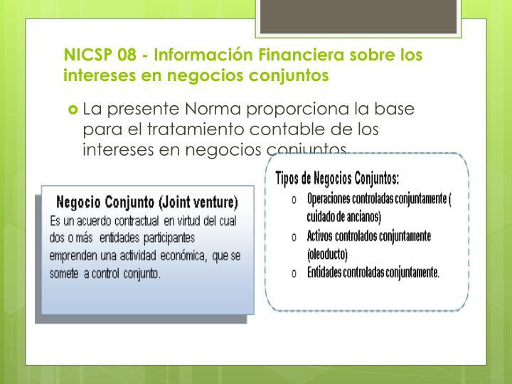 NICSP 08 - Información Financiera sobre los intereses en negocios conjuntos