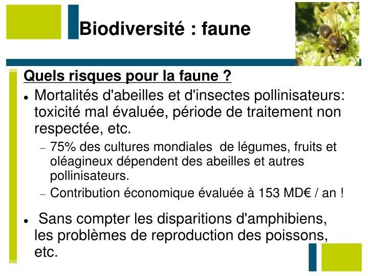 Biodiversité : faune