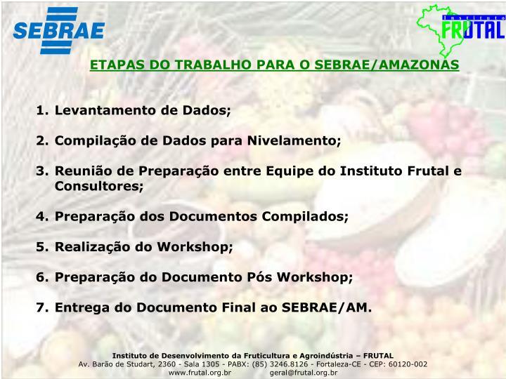 ETAPAS DO TRABALHO PARA O SEBRAE/AMAZONAS