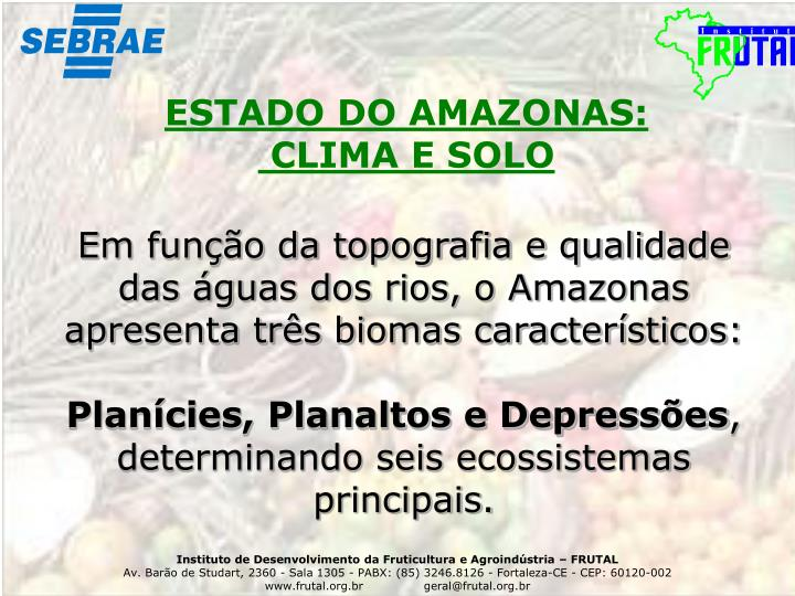 ESTADO DO AMAZONAS: