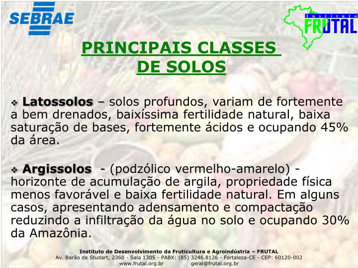 PRINCIPAIS CLASSES