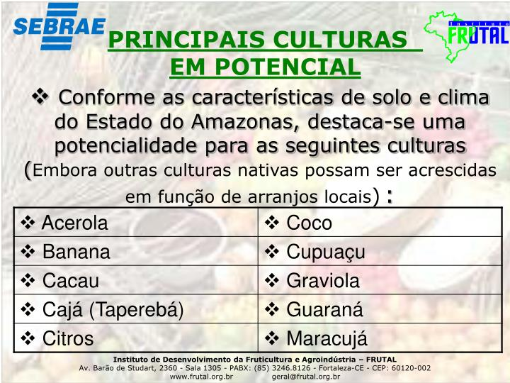 PRINCIPAIS CULTURAS
