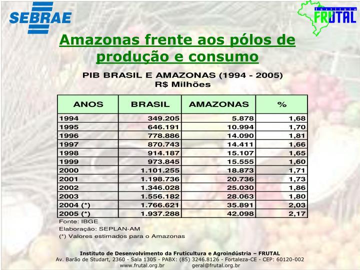 Amazonas frente aos pólos de produção e consumo