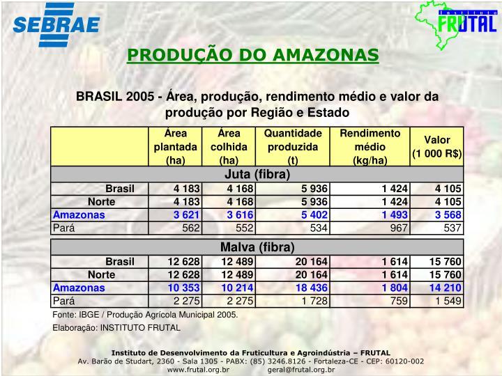 PRODUÇÃO DO AMAZONAS