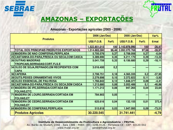 AMAZONAS – EXPORTAÇÕES