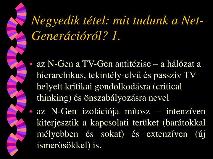 Negyedik tétel: mit tudunk a Net-Generációról? 1.