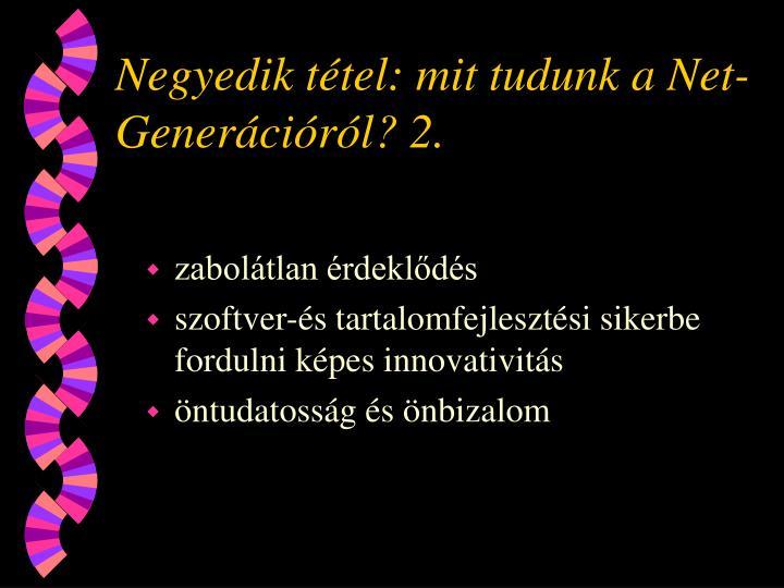 Negyedik tétel: mit tudunk a Net-Generációról? 2.