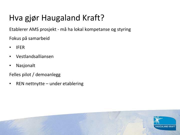 Hva gjør Haugaland Kraft?