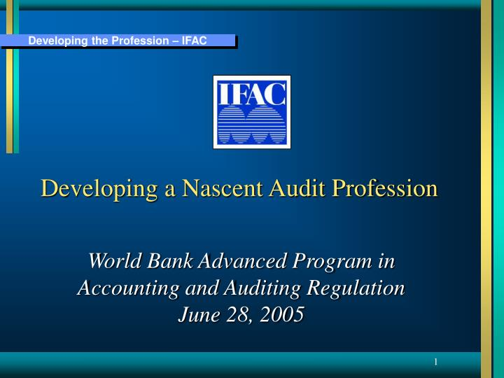 Developing a Nascent Audit Profession