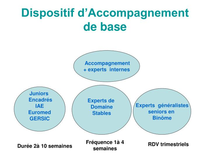 Dispositif d'Accompagnement