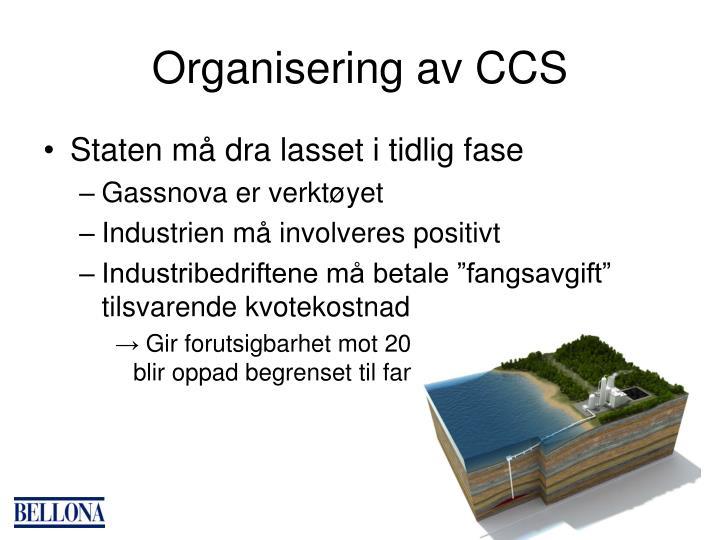 Organisering av CCS
