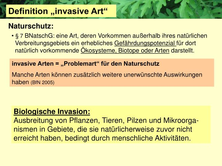 "Definition ""invasive Art"""